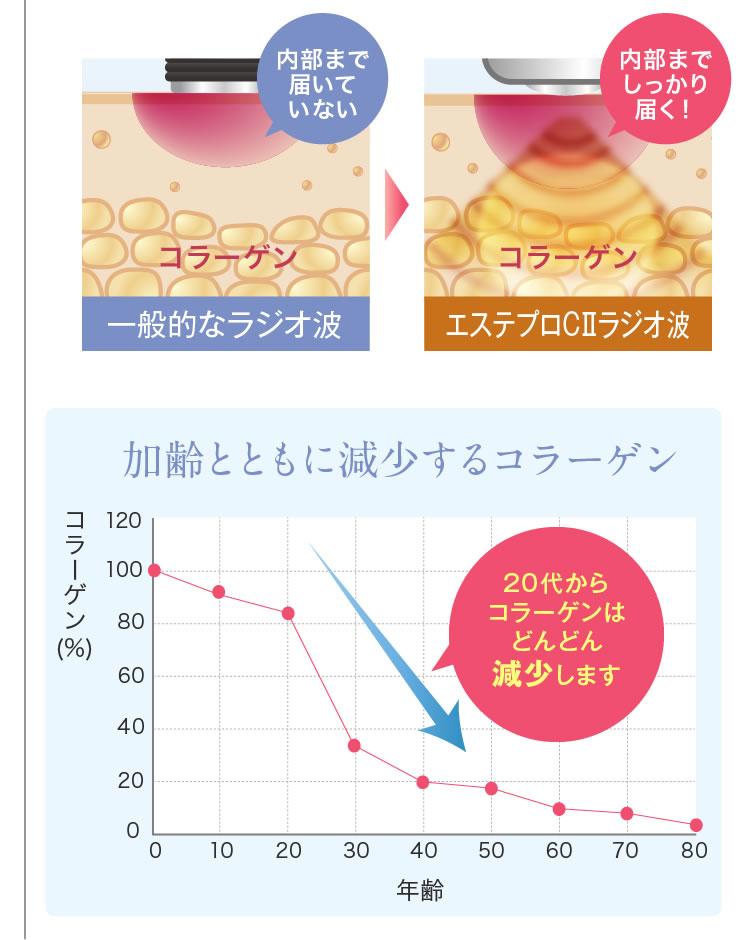 20代からコラーゲンはどんどん減少します